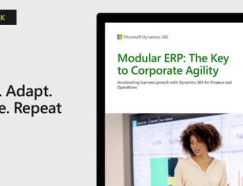 e-Book / Modular ERP: The Key to Corporate Agility
